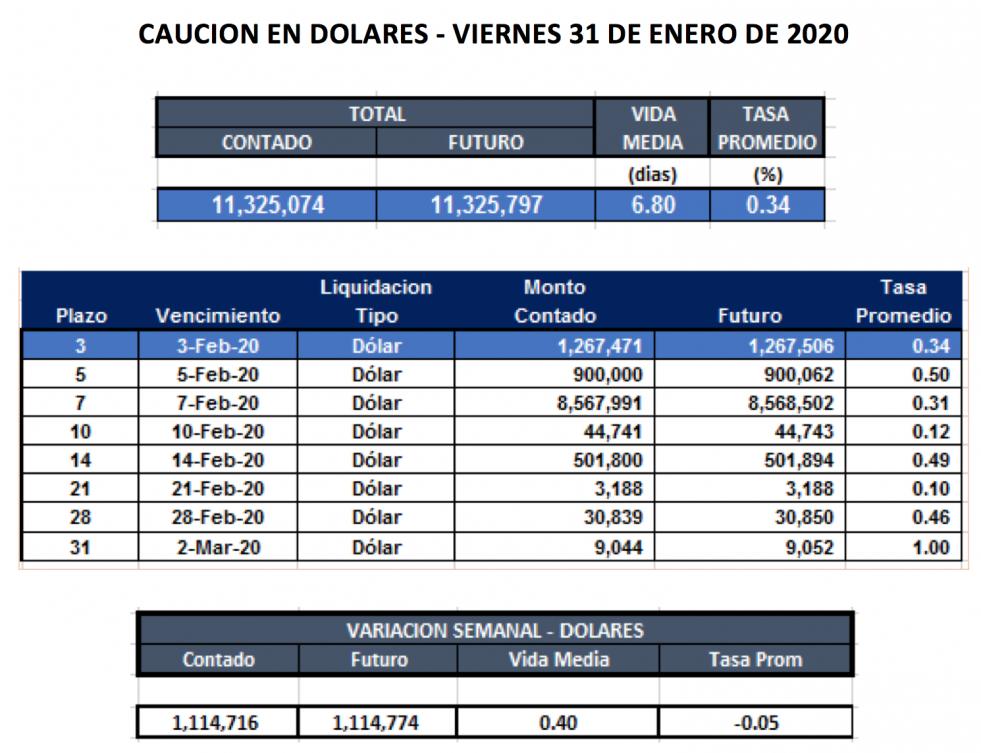 Cauciones en dolares al 31 enero 2020