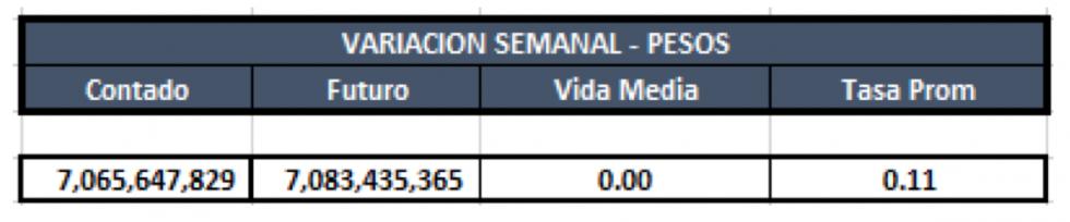 Cauciones en pesos al 31 enero 2020