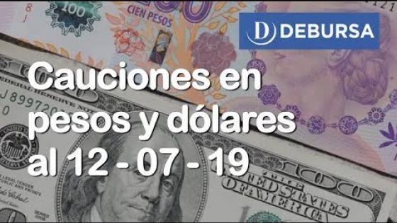 Cauciones bursátiles en pesos y dólares al 12 de Julio 2019