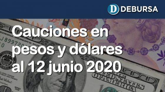 Cauciones bursátiles en pesos y dólares al 12 de junio 2020